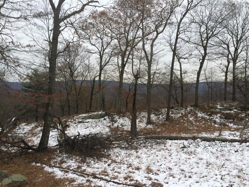 Mindful Winter